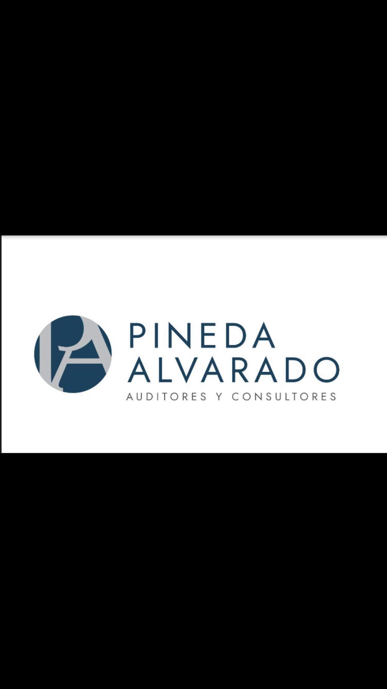 Pineda Alvarado auditores y consultores