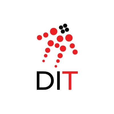 Logo de Desarrollo Internacional de Talento